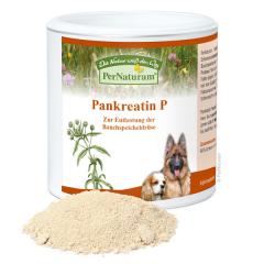 Bild von Artikel Pernaturam Pankreatin P 100g Dose