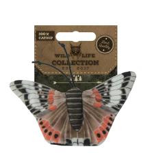 Bild von Artikel Wild Life Collection Schmetterling rot
