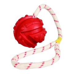 Bild von Artikel Ball am Seil klein